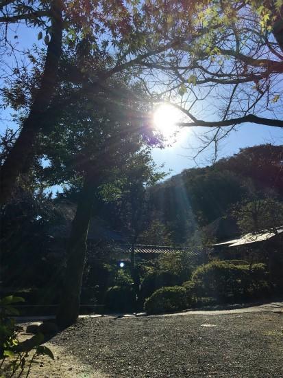 20181029 鎌倉 浄智寺にて
