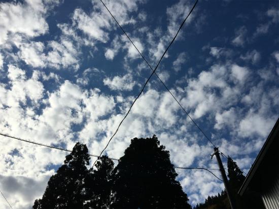 20181103杉水収穫祭8