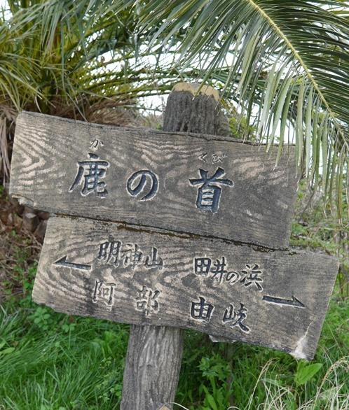 kanokubi_04150062.jpg