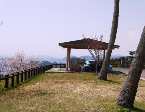 siohukiiwa_04150032.jpg