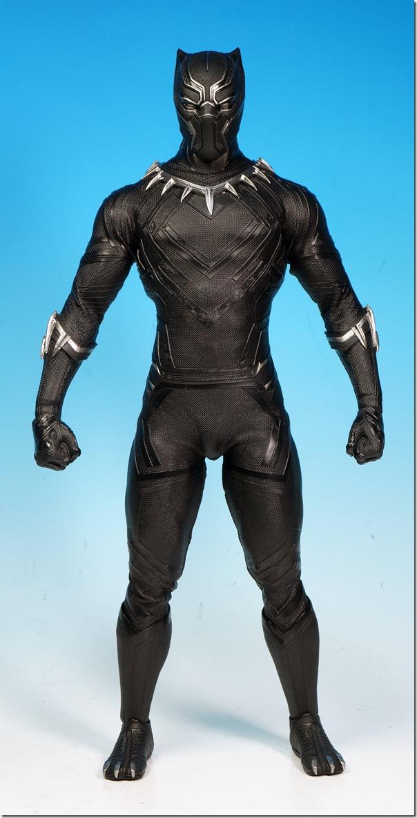 black panther01