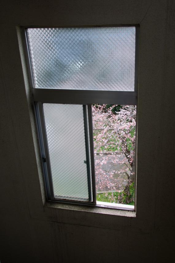DSC_5548_lightroom.jpg