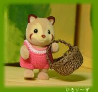 アライグマ赤ちゃんのおつかい♪