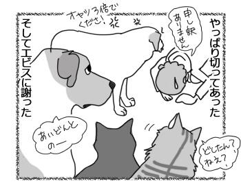 01032017_dog4.jpg