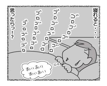 03032017_dog3.jpg