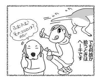 06032017_dog2.jpg