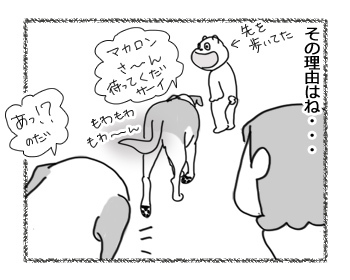 06032017_dog3.jpg