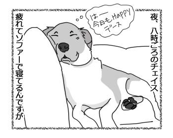 06042017_dog1.jpg