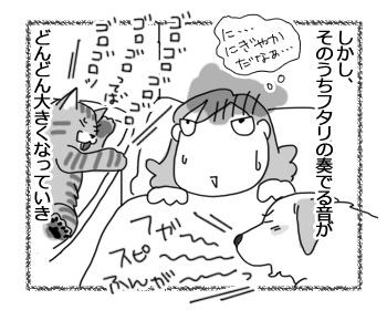 08032017_dog3.jpg