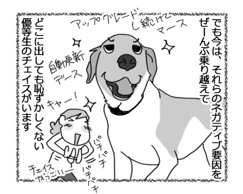 09032017_dog3.jpg