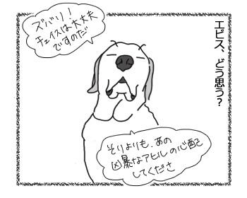 09032017_dog5.jpg