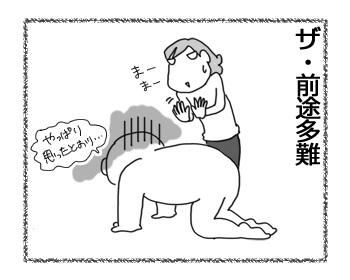 10032017_dog7.jpg