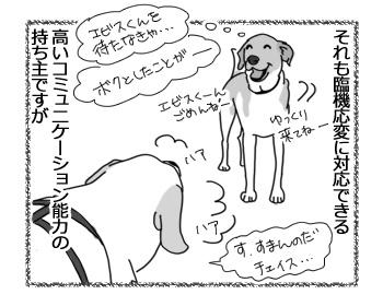 14022017_dog3.jpg