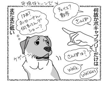 14022017_dog4.jpg