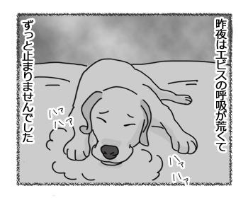 14032017_dog1.jpg