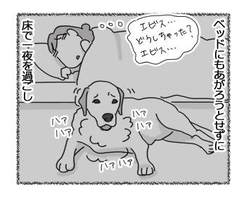 14032017_dog3.jpg