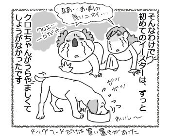 14042017_dog3.jpg