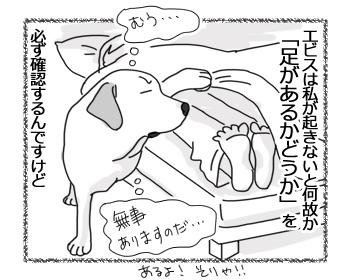 16022017_dog1.jpg
