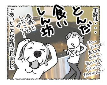 16032017_dog3.jpg