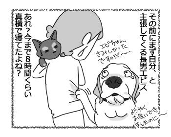 17032017_dog4.jpg
