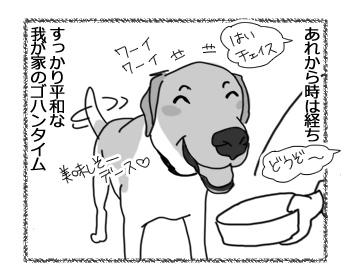 21022017_dog2.jpg