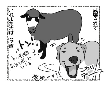 22022017_dog3.jpg