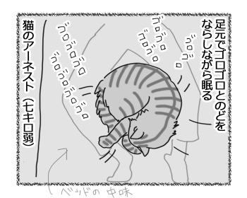 23032017_dog1.jpg
