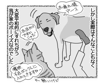 24022017_dog4.jpg