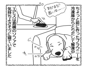 27032017_dog1.jpg