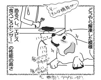 27032017_dog5.jpg