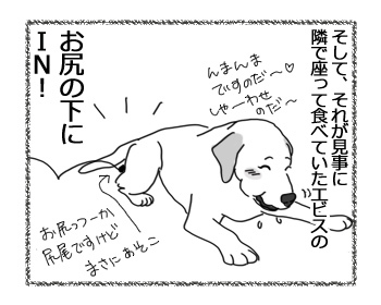 29032017_dog2.jpg