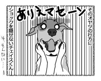 29032017_dog3.jpg