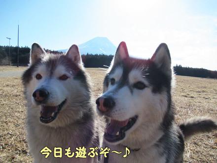 富士山とおふたりさん