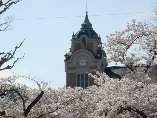 桜公会堂1