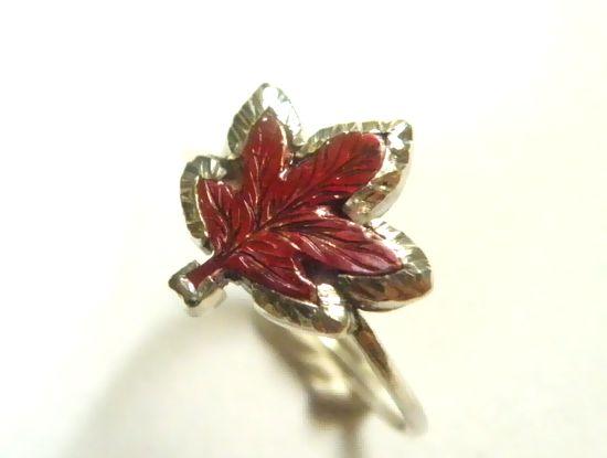 緋色銅紅葉2