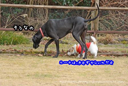 170206_yuasa8.jpg