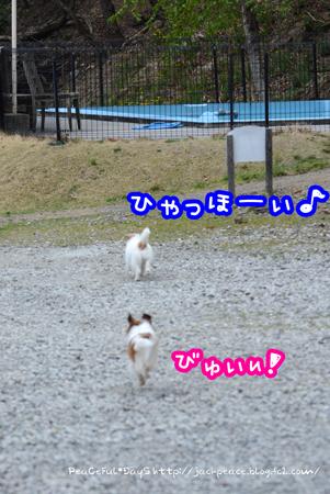 170406_yuasa14.jpg