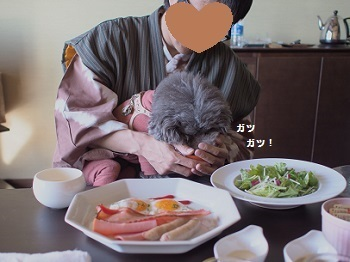うちのこ記念旅行玉響の風朝食20170308-3