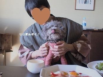 うちのこ記念旅行玉響の風朝食20170308-5