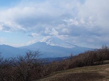 うちのこ記念旅行富士山20170308-1