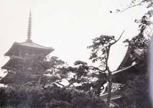 法隆寺五重塔 高校修学旅行