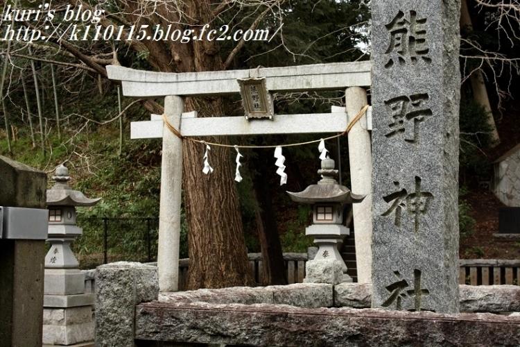 2017上草柳熊野神社 (1)