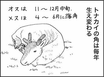 kfc00831-4.jpg