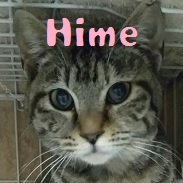 Hime.jpg