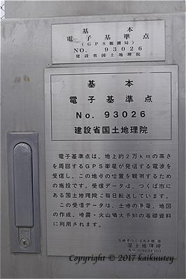 P1004601tq.jpg