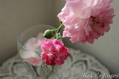 s-IMG_0062kako.jpg