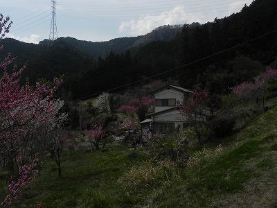 DSCN6109.jpg