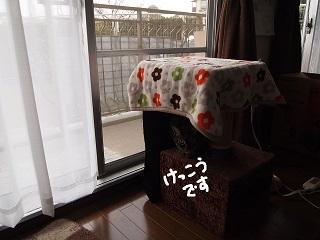 harudesu6-2.jpg