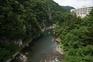 鬼怒川生態調査