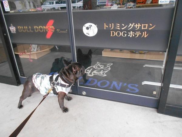 181024武蔵誕生月健診up149時過ぎブルドンズまだ開店前